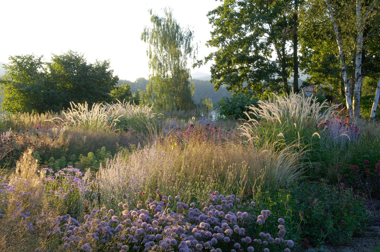 Piet oudolf jurgen becker for Designing with plants oudolf