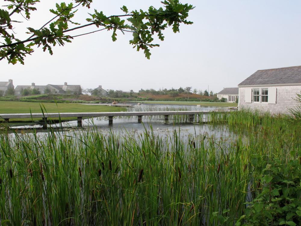 Nantucket island piet oudolf for Piet oudolf private garden