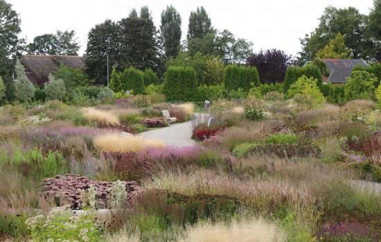 Piet oudolf vlinderhof for Piet oudolf serpentine gallery