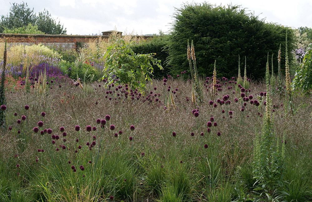 Piet oudolf bury court for Piet oudolf private garden