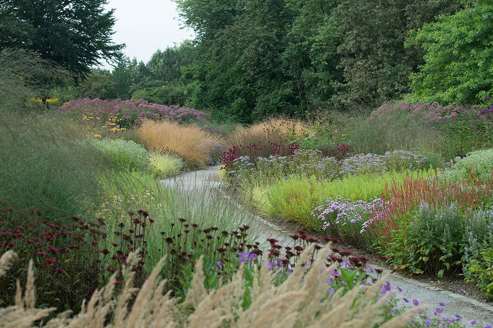 Piet oudolf maximilianpark for Landscapes in landscapes piet oudolf
