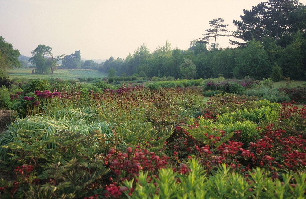 Piet oudolf wisley for Piet oudolf private garden